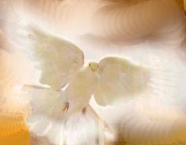 ascensao pentecostes espirito santo nossa senhora jesus dons