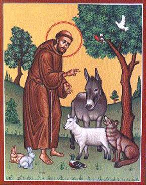 cantos franciscanos letras cifras são francisco de assis santa clara de assis